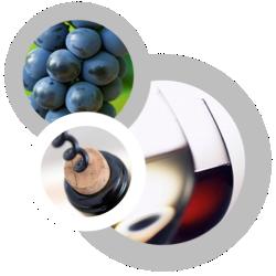 Wines ...